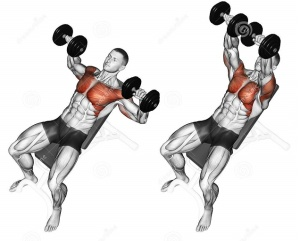Lower Chest Bench Press - BENCH |Flat Bench Press Muscles Worked